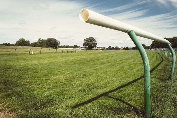 Warwick race track Check This Out Grass Warwick Interesting Perspectives Green