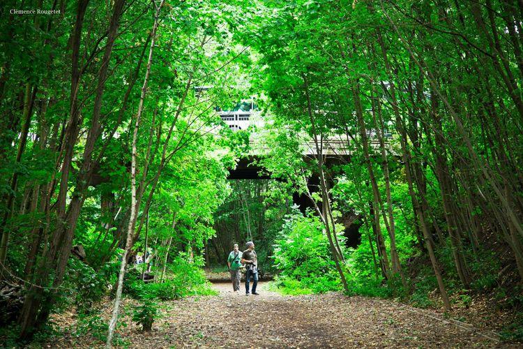 La Petite Ceinture, Paris 16e. La Petite Ceinture Paris Nature Canon City Followme