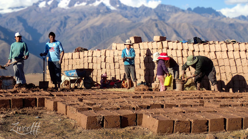 albañiles - Masons Builder Worker Peru Adult Agriculture Bird Builder Builders Day Domestic Animals Farmer Leisure Activity Lifestyles Livestock Mammal Men Mountain Mountain Range Nature Occupation One Animal One Person Outdoors People Pets Real People Sky Standing Women