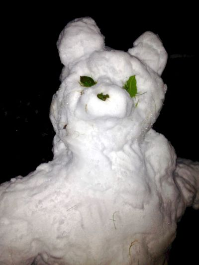 Creepy snowman we built at 3am. Boo! Ice Rose Petals Snow ❄ Winter Wintertime Art And Craft Artificial Black Background Button Nose Close-up Craft Creepy Ears Figurine  Flash Human Representation Night No People Sculpture Snow Snowman Statue Teddy Bear White Color