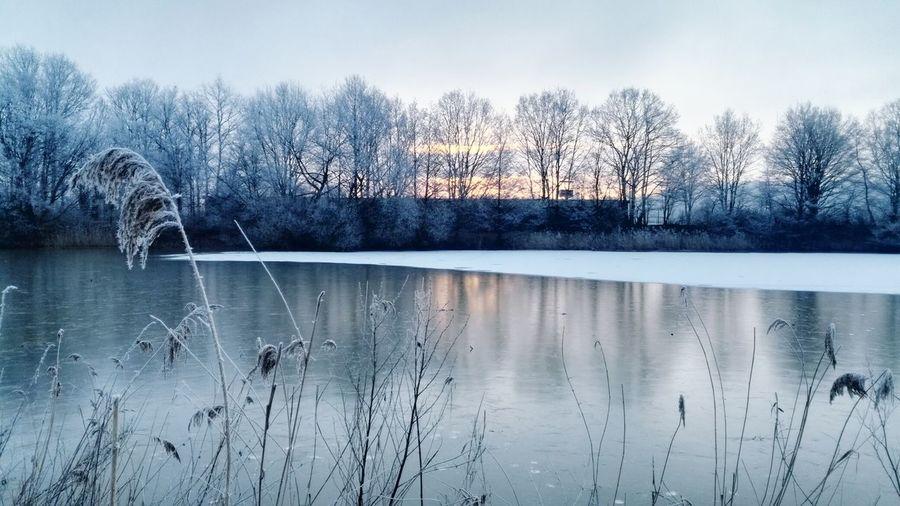 ein kalter frostiger wunderschöner Morgen Winter Wintertime Winter Morning Frosty Morning Water Sunrise