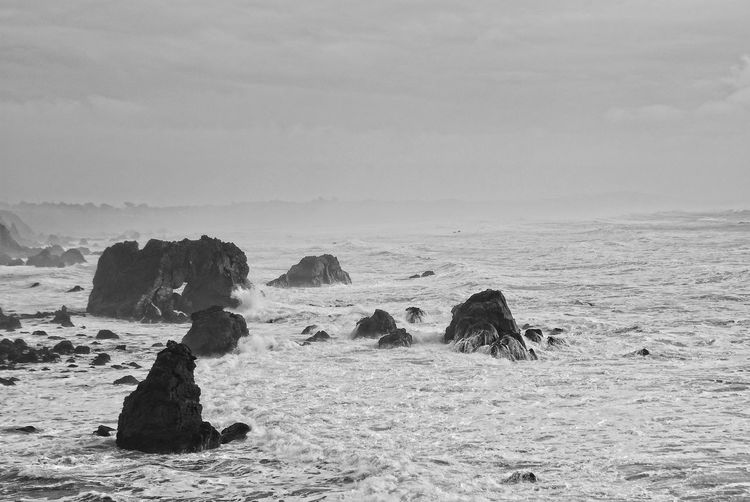 Bodega Bay - wild sea California California Coast EyeEm Nature Lover EyeEmNewHere Highway 1 Nature Photography Pacific Rough Sea Travel Beach Beauty In Nature Horizon Over Water Nature Naturelovers No People Outdoors Pacific Ocean Rock - Object Rocks Rocks And Water Scenics Sea Spray Water Wave