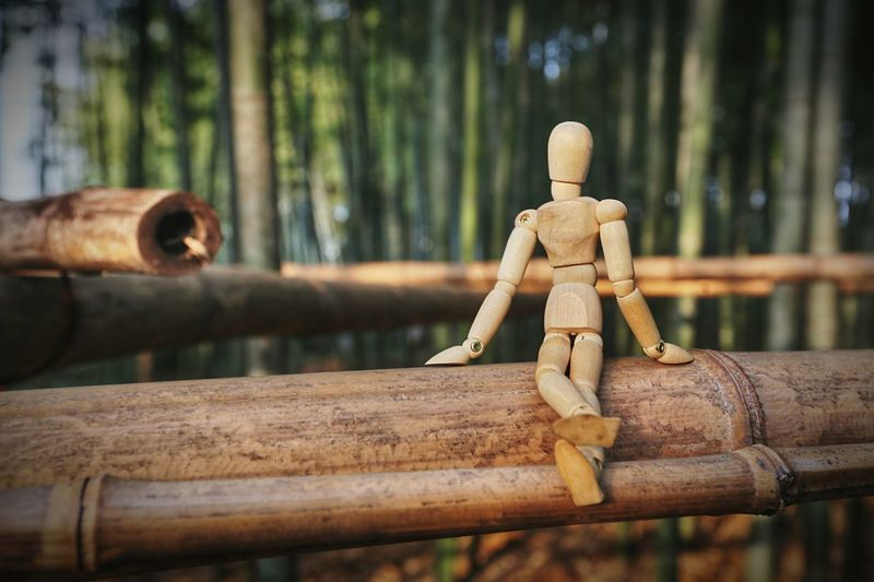 In a bamboo forest Woodyforest EyeEm Selects Wood - Material Art And Craft Human Representation No People Focus On Foreground Representation Creativity Bamboo - Material Selective Focus Sunlight Figurine  Brown