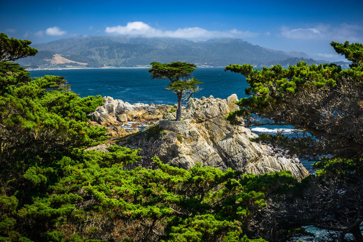 Beauty In Nature Cloud - Sky Day Growth Land Mountain Nature No People Outdoors Plant Rock Rock - Object Scenics - Nature Sea Sky Solid Tranquil Scene Tranquility Tree Water