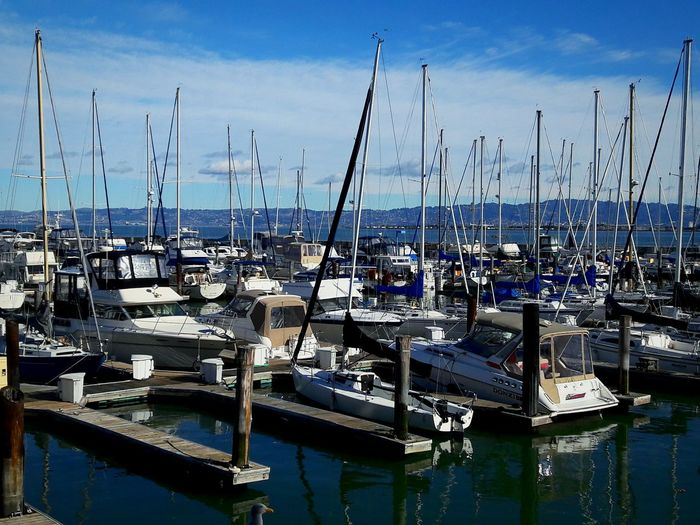 Pier 39 Marina Harbor Nautical Vessel Transportation Moored Water Sea Mode Of Transport Sky Sailboat Mast Outdoors No People Day EyeEm Gallery Open Edit Sunshine Beautiful Day Color Photography Close-up Check This Out Outdoor Photography Enjoying Life Eyeemphoto Lots To See Nature