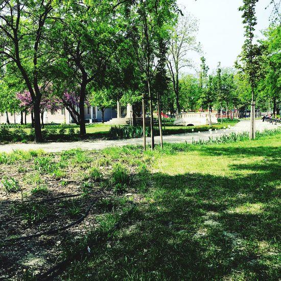 Earth Day Earth Day 2016 Föld Napja Ter Green Breaktime Szünet Budapest Hungary Magyarország