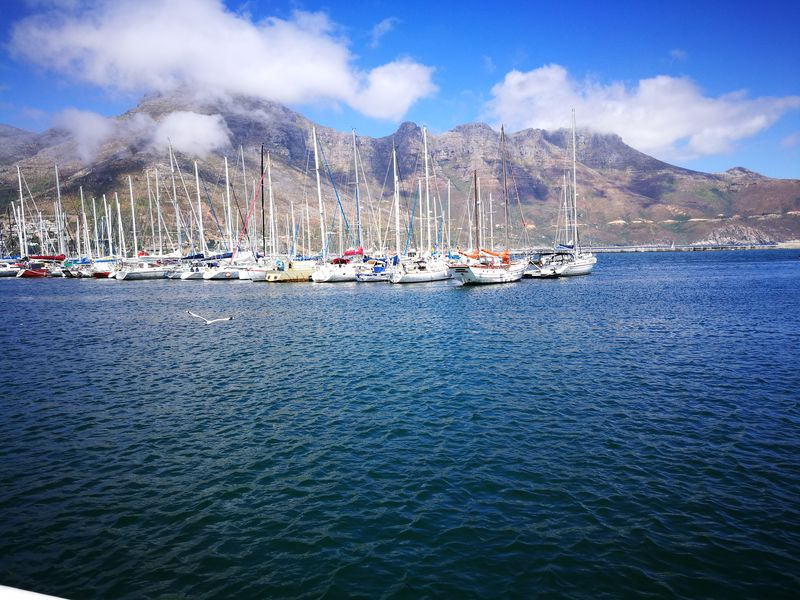 Boats Nautical Vessel Sea Water Yacht Sailboat Harbor Transportation Mode Of Transport Moored Marina Outdoors Cloud - Sky Beach Scenics Rippled No People Tranquility Travel Destinations Day Mast