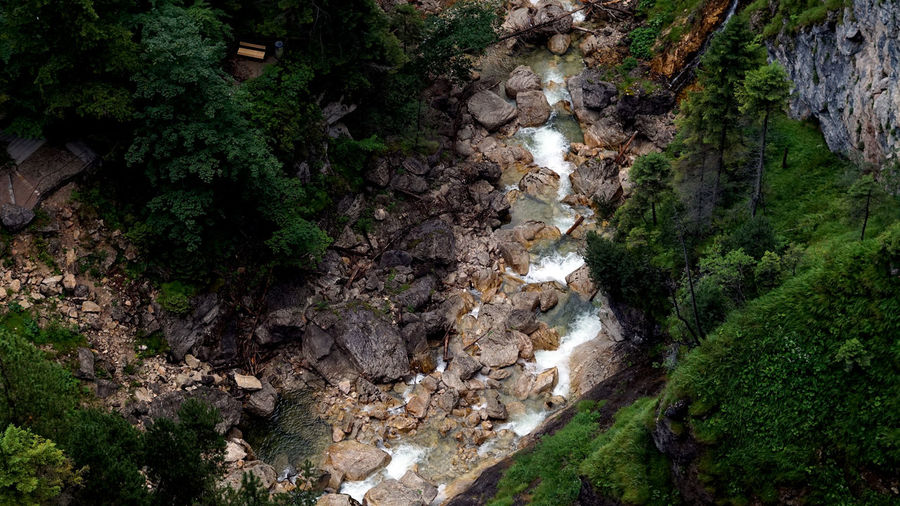 High angle view of rocks amidst trees in forest