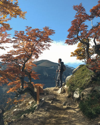 Low angle view of man standing by trees on mountain