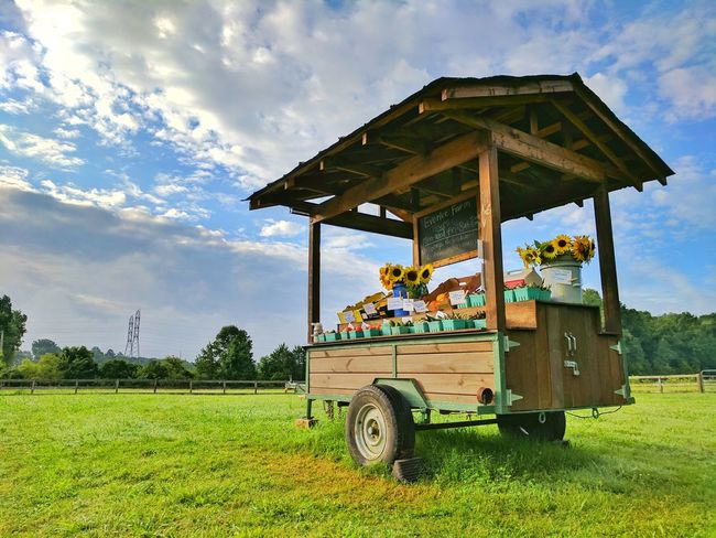 Agriculture Rural Scene Outdoors Grass Food Landscape Day No People Sunshine Chattanooga Tree Farming Rustic Heavens Sky Nature Freshness Farm Countryside Rural Beauty In Nature