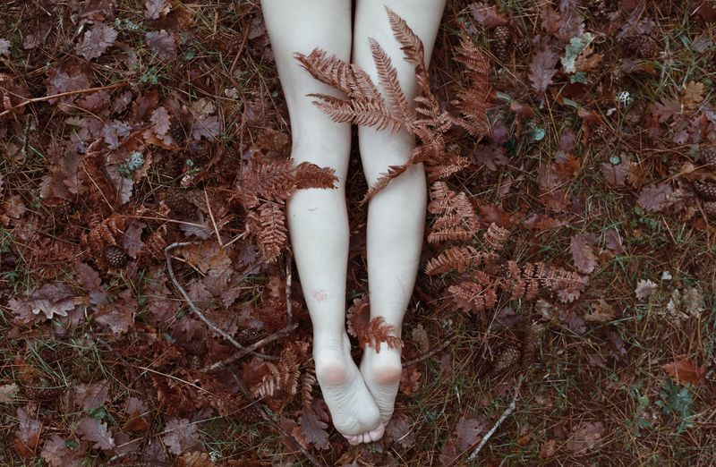 Low Section Of Woman Lying Amidst Leaves On Field During Autumn