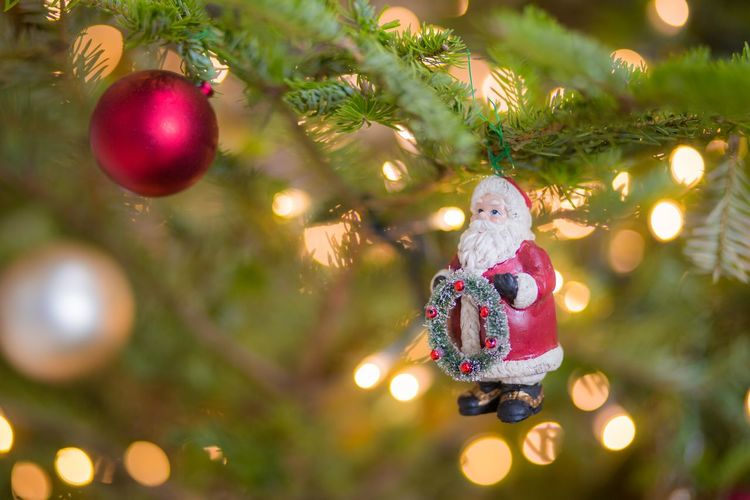 いよいよ冬到来ですね。 Tree Christmas Decoration Illuminated Christmas Lights Christmas Ornament Hanging Christmas Holiday - Event Celebration christmas tree Doll Shining Glittering Decorating The Christmas Tree