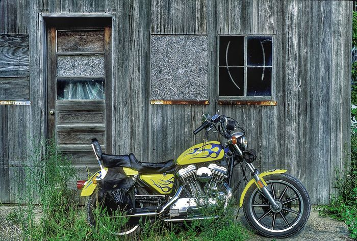 Harley Davidson motorcycle Motorcycle Motorcycles Biker Bikers Harley Davidson Harley Davidson Sportster HarleyDavidsonMotorcycles Harley-Davidson Harleydavison Harleydavidson Harley Motorcyclepeople Biker Life Color Motorcycle Photography Yellow Flames Ride Or Die Taking Pictures Editorial