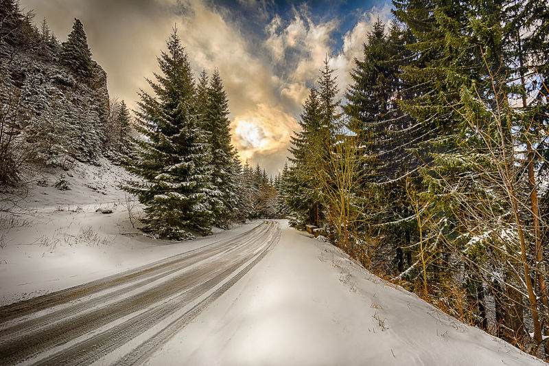 Sunrise Beauty In Nature Cloud - Sky Cold Temperature Diminishing Perspective Empty Road Forest Growth HDR Landscape Landscape_Collection Landscape_photography Nature Road Scenics Sky Snow The Way Forward Tranquil Scene Tranquility Transportation Tree Vanishing Point Winter