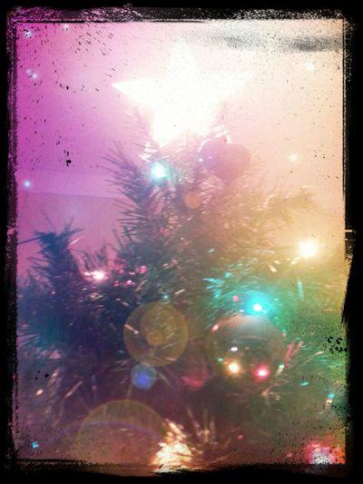 Christmas Tree Christmastree Tree Star
