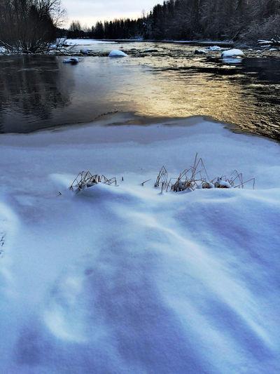 Suomi Finland Winter Finland Saarijärvi Luonto