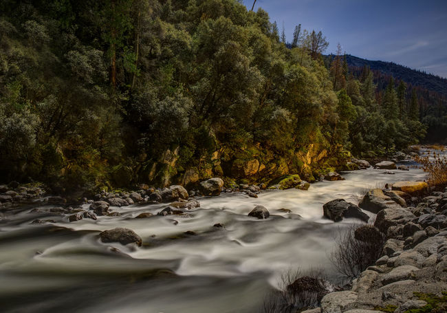 River riverbed raging river view Outdoors No People Yosemite Beauty In Nature Moonlit Night Scene night Yosemite National Park Water Merced night Night Photography Long Exposure Perspectives On Nature
