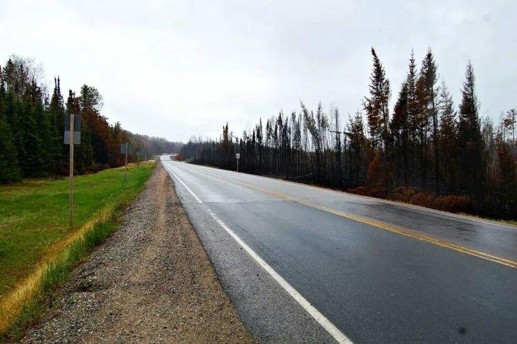 rainy days save lives .. forest fire 2012.. RainyDays Mother Nature Photography Rainy Days