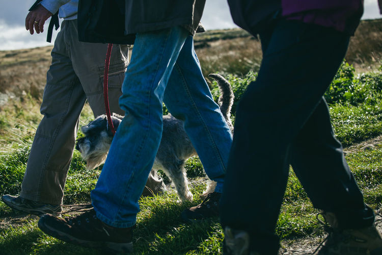 Activity Country Countryside Day Out Dog Dog Walking England Exercise Fitness Fresh Air Healthy Hiking Hills Landscape Moors Nature Otley Outdoors Path People Rambling Trail Walkers Walking Yorkshire
