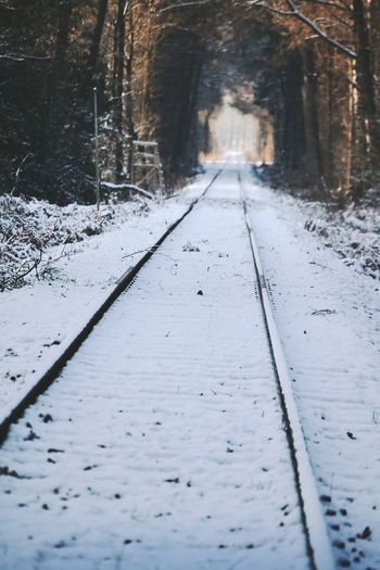 Winter Snow Cold Temperature The Way Forward Outdoors Nature Wanderlust Railway Railroad Railroad Track Rails Winter Wonderland