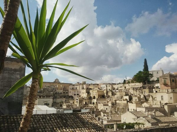 Matera Sassi Di Matera Basilicata, Italy  Architecture Built Structure Building Exterior Cloud - Sky History Cityscape Travel Destinations Palm Tree City Tree No People Sky Outdoors Roof Day Hystorical Centre Old Town Smartphone Photography F1 Filter Note 2