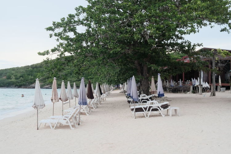 Empty chairs on beach against trees