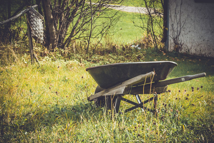 Abandoned Absence Clover Deserted Empty Feedbag Field Field Garden Garden Photography Grass Grass Green No People Old Rusty Showcase March Sunlight This Week On Eyeem Tranquility Tree Vintage Wheelbarrow Wood - Material Worn
