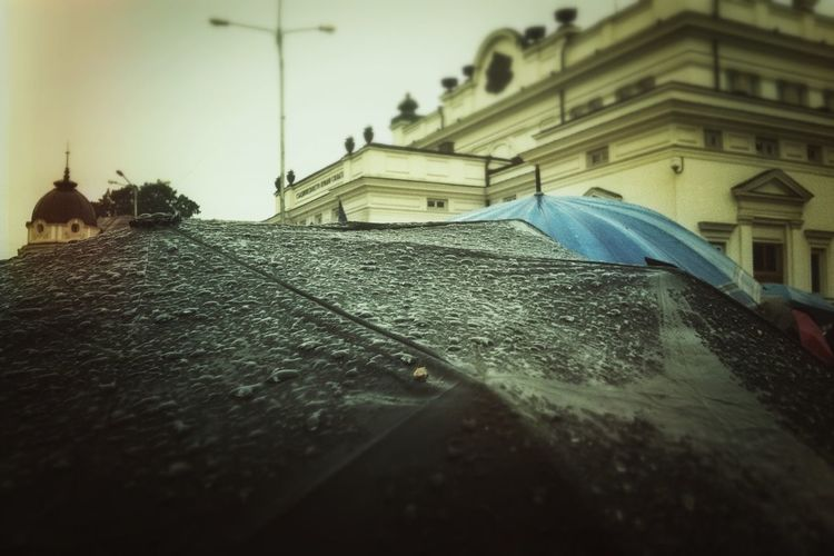 Rain EyeEm Best Shots
