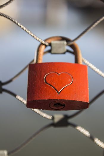 Close-up of love padlocks hanging on metal fence