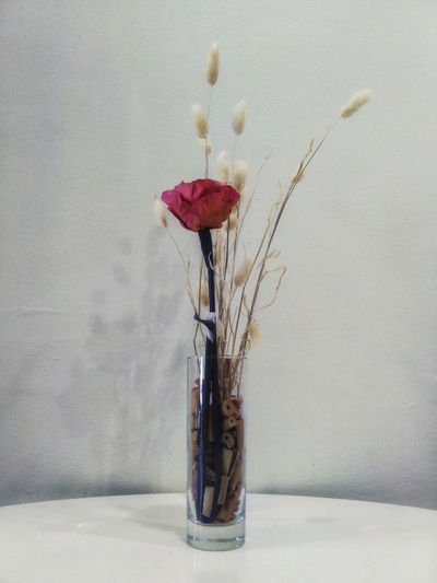 Close-up of red flowers in vase against wall