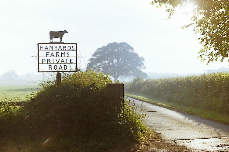 Farm Lane Farm Sign. Morning Light Landscape Outdoors Road Sunrise Tree