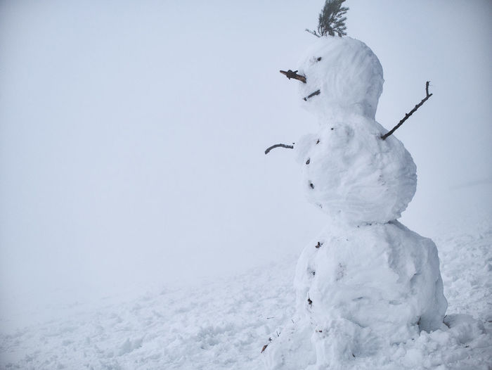 Close-up of snowman on land during foggy weather