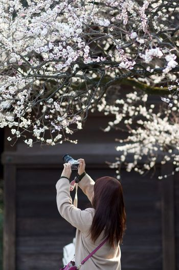 熱田神宮にて。FA77mmF1.8Limited Beautiful Eye4photography  EyeEm Gallery EyeEm Japan Japan Japanese Culture Japanese Photography Japanese Temple Taking Photos Temple