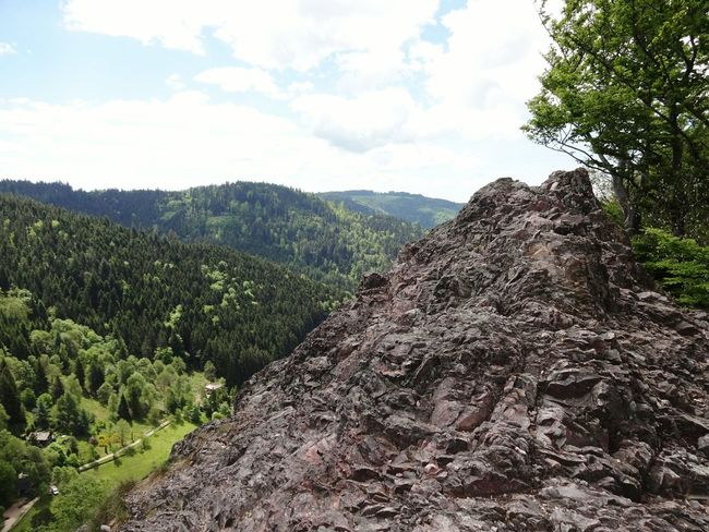 Tree Nature Mountain No People Cloud - Sky Growth Day Sky Outdoors Beauty In Nature Landscape Scenics Karlsruher Grat Berg Mountain Range Mountain View Hiking Rock Formation Felsen Hiking Trail Black Forest Schwarzwald Klettersteig Tal Valley