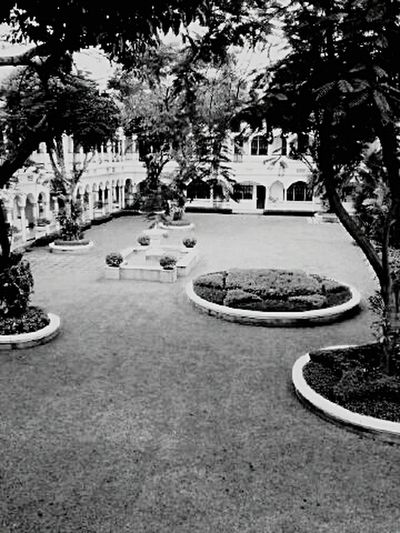Showcase: December Majapahit Hotel Old Building  Hotel Taking Photos Indonesia_photography EyeEm Indonesia Surabaya Black And White Photography Hanging Out Mobile Photography Northgarden Garden