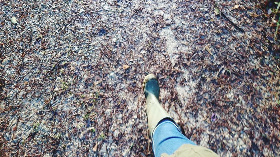 Welly walk Welly Walk Welly Boots Wellies  Wellington  Welly Walking Forest Forest Photography Forestwalk Country Life Trees TreePorn Cropton Low Section Standing Human Leg Directly Above Shoe High Angle View Personal Perspective Footwear Ground Human Foot