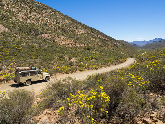 Classic 4x4 car on dirt track in in Cederberg Wilderness Mountain Area, South Africa 4x4 Cederberg South Africa Beauty In Nature Car Cedarberg Day Dirt Road Land Vehicle Landscape Mountain Mountain Range Mountain Road Nature No People Offroad Outdoors Road Scenics Transportation Wild Flowers Winding Road