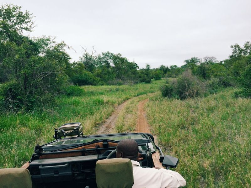 Safari and game drives in South Africa Adventure Adventure Buddies Adventure Club Africa Driving Exotic Exploring G Game Drive Guide Land Vehicle Landscape Mountains Nature Nature_collection Outdoors Safari South Africa Taking Photos Travel Wilderness Wildlife Wildlife & Nature Wildlife Photography