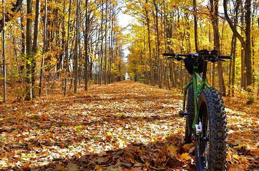 Beautiful day for a ride on the Elora Cataract trail. Erin Ontario Canada Fall Fallingleaves Colourful Railtrail Lovefattirebikes Fatbike Salsabikes Mukluk Cool Cycling Spandex Rrhurstphotography Latowphotographersguild