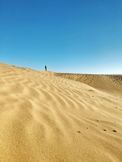 EyeEm Ready   Sand Sand Dune Desert Clear Sky Arid Climate Nature Sunny Travel Destinations Scenics Sky Day Blue Summer EyeEm Ready   Minimalism_world Minimalpeople Minimalism Photography Minimalist Photography  EyeEm Ready   An Eye For Travel