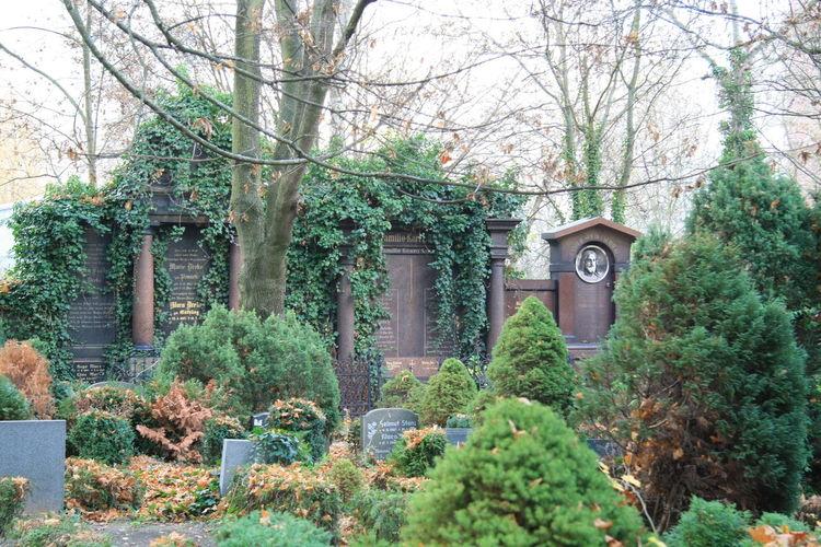 Alte Gräber Bank Bänke Efeu An Mauer Friedhof Kapelle Landschaft Herbst Makro Kohl Makro Pilz Makro Schirmpilz Makro Zierkohl Weg Herbst Zaun