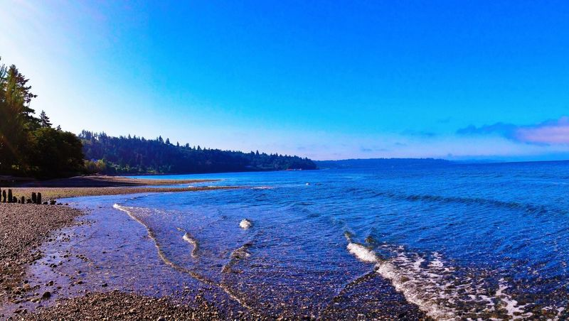 Nature Blue Tranquility Tranquil Scene Beauty In Nature Scenics Water Outdoors Day No People Sky Sea Tree Beach