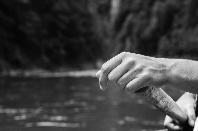 Cropped hands of man paddling in river