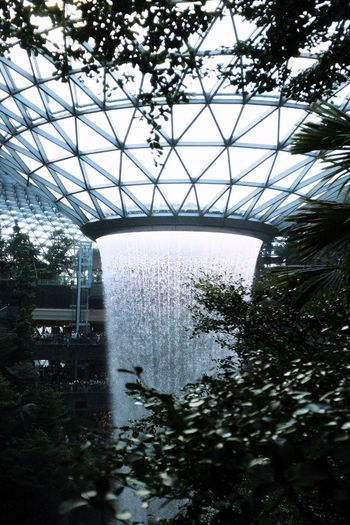 HSBS Rain Vortex Water Airport Singapore Waterfall Vortex Tree Architecture Plant Built Structure Nature Day No People