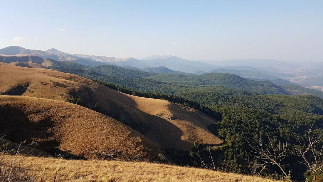EyeEm Selects Mountain Nature Landscape Mountain Range Shadow No People Sunlight Outdoors Sky Tree Day Beauty In Nature Freshness Exploring South Africa Beauty In Creation  Capturing The Moment South Africa Sabie, Mpumalanga Beauty Is Everywhere  South Africa 🇿🇦 God's Glory On Display