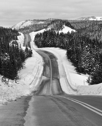 Road Winter Snow Landscape