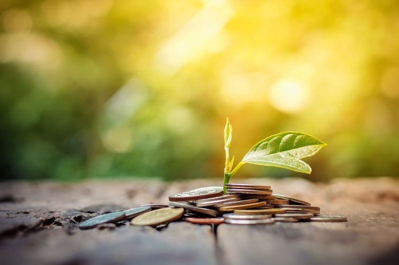 Soil Seed Secure Saving Saft  Put Profit Plant Plan Penny Money Metaphor Manicure Leaf Investment Interest Incease Idea Growth Growing Gold Glass Fund Financial Economy Earning Deposit Currency Container Concept Coin Cash Capital Business Bottle Banking Bank Account Hope