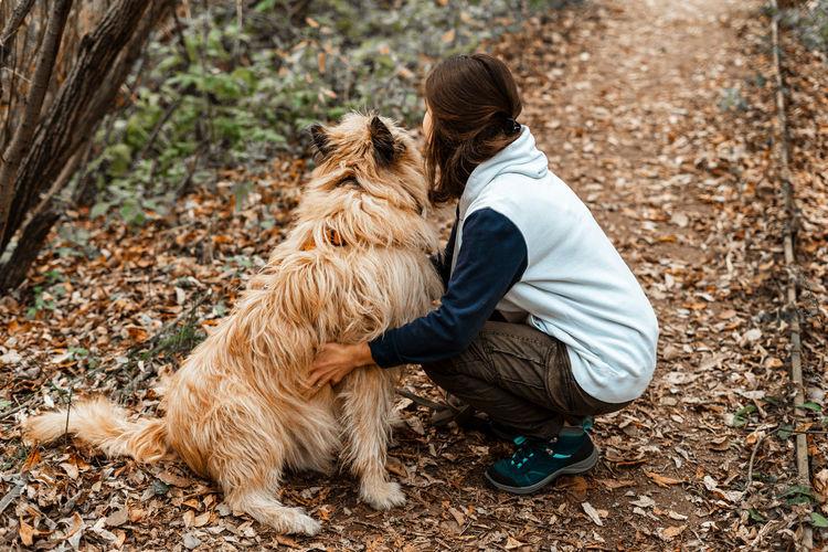 Full length of dog on landscape