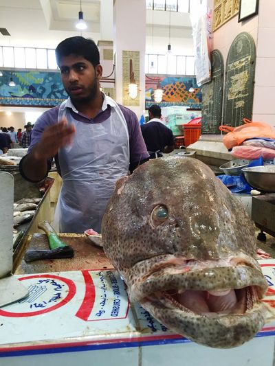 Fish market, sharq area gulf road Kuwait - bargaining price with vendor 😎😜 Fishhead Taking Photos FishMarket BIG Working Daily Life Cellphone Photography Market Fish