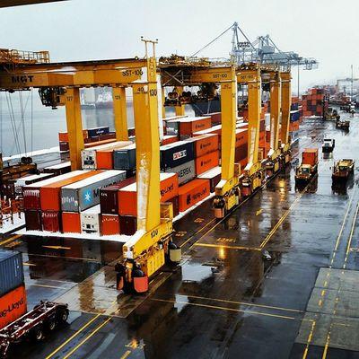 Transtainer line-up Tranr Racine PortMTL